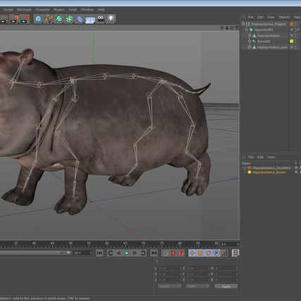 Hippopotamus Rigged for Cinema 4D. Render 25