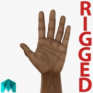 African Man Hands 3 Rigged for Maya