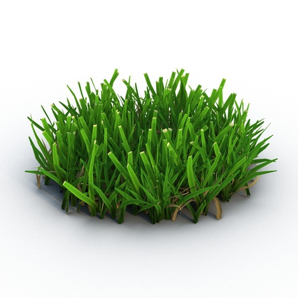 Grass Collection. Render 4
