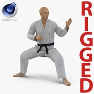 Japanese Karate Fighter Rigged for Cinema 4D