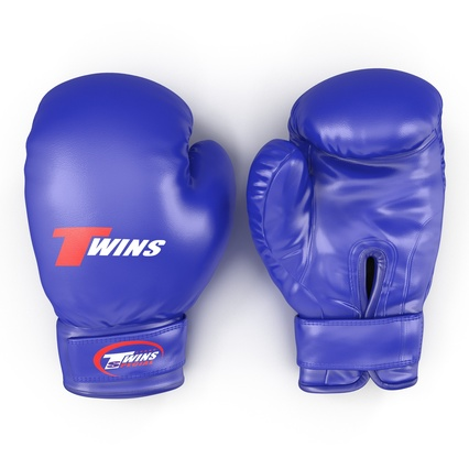 Boxing Gloves Twins Blue. Render 2