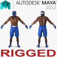 African American Boxer Rigged for Maya