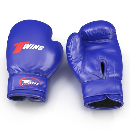 Boxing Gloves Twins Blue. Render 5