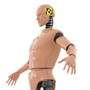 Male Crash Test Dummy Rigged for Cinema 4D. Preview 18