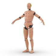 Male Crash Test Dummy Rigged for Cinema 4D. Preview 14
