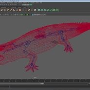 Crocodile Rigged for Maya. Preview 19