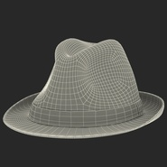 Fedora Hat Brown. Preview 26