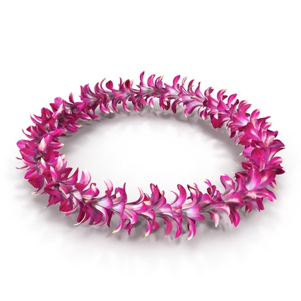 Hawaiian Leis Collection. Render 17