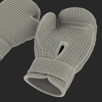 Boxing Gloves Twins Blue. Render 37