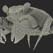 Vampire Crab Geosesarma Rigged with Fur. Preview 34