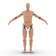 Male Crash Test Dummy Rigged for Cinema 4D. Preview 6