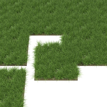 Grass Fields Collection 2. Render 11