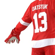 Hockey Equipment Detroit Red Wings. Preview 37