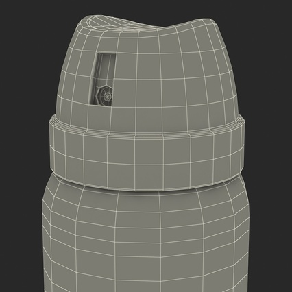 Metal Bottle With Sprayer Cap Generic. Render 24