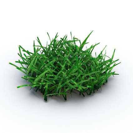 Grass Collection. Render 3