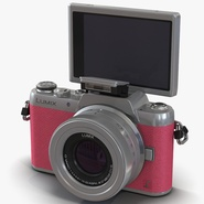 Panasonic DMC GF7 Rigged Pink
