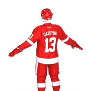 Hockey Equipment Detroit Red Wings. Preview 20