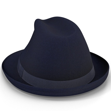 Fedora Hat Blue. Render 14