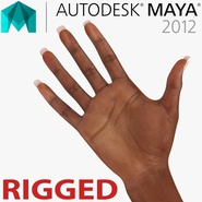 Female Hand African American Rigged for Maya