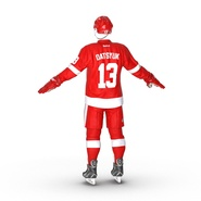 Hockey Equipment Detroit Red Wings. Preview 10