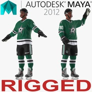 Hockey Player Stars Rigged for Maya