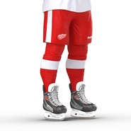 Hockey Equipment Detroit Red Wings. Preview 29