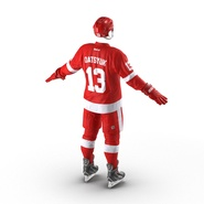 Hockey Equipment Detroit Red Wings. Preview 9