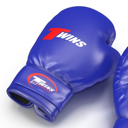 Boxing Gloves Twins Blue. Render 17