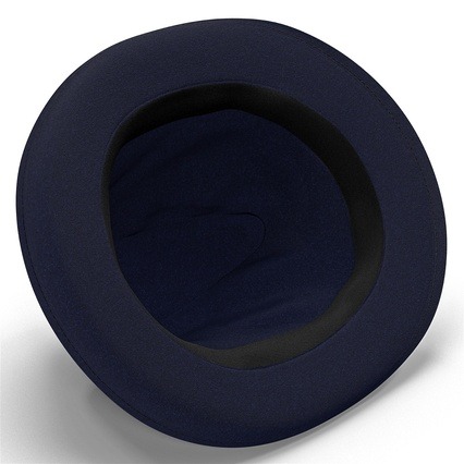 Fedora Hat Blue. Render 17