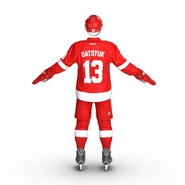 Hockey Equipment Detroit Red Wings. Preview 15