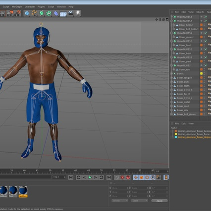 African American Boxer Rigged for Cinema 4D. Render 23