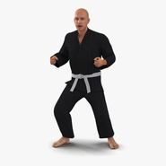 Karate Fighter Black Suit Rigged