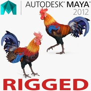 Rooster Rigged for Maya