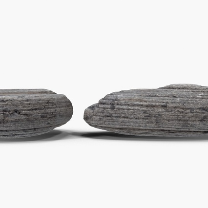 Small Rock. Render 7