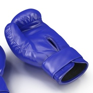 Boxing Gloves Twins Blue. Preview 21