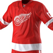 Hockey Equipment Detroit Red Wings. Preview 38
