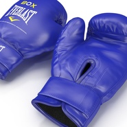 Boxing Gloves Everlast Blue. Preview 14