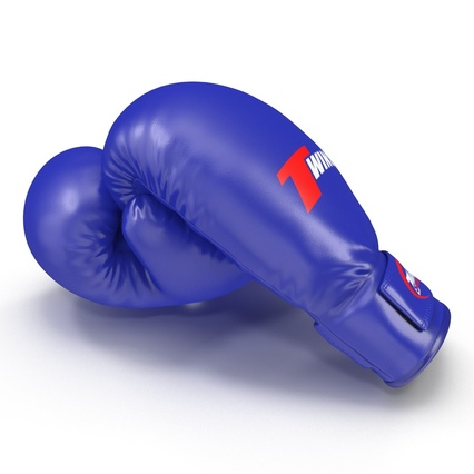 Boxing Gloves Twins Blue. Render 15