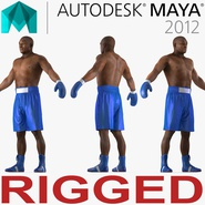 African American Boxer 2 Rigged for Maya