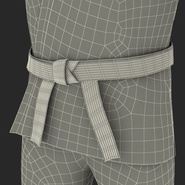Karate Fighter Rigged for Cinema 4D. Preview 57