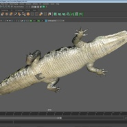 Crocodile Rigged for Maya. Preview 21