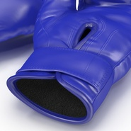 Boxing Gloves Twins Blue. Preview 24