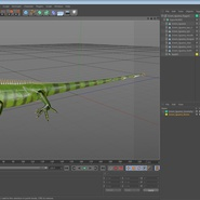 Green Iguana Rigged for Cinema 4D. Preview 24