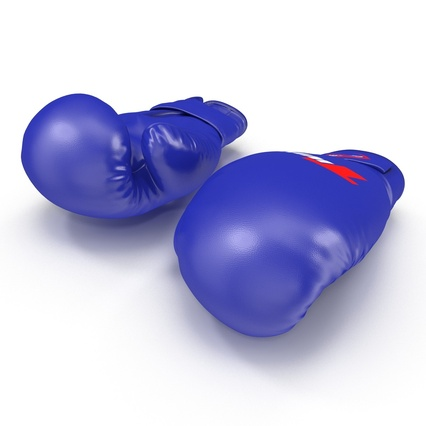 Boxing Gloves Twins Blue. Render 8