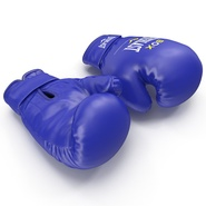 Boxing Gloves Everlast Blue. Preview 9