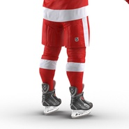 Hockey Equipment Detroit Red Wings. Preview 30