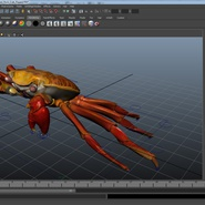 Red Rock Crab Rigged for Maya. Preview 25