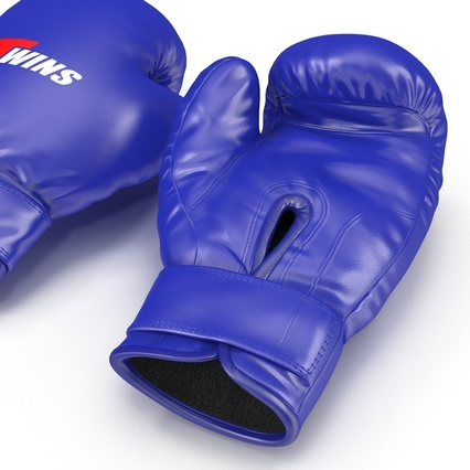 Boxing Gloves Twins Blue. Render 20