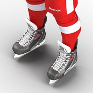 Hockey Equipment Detroit Red Wings. Preview 44