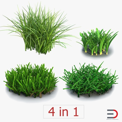 Grass Collection. Render 1